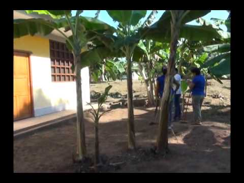 Exigen poner en funcionamiento casa mujer en Cuñumbuque
