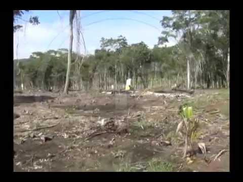 Inmobiliarias de Morales estarían vendiendo terrenos sin proyecto de planeamiento integral