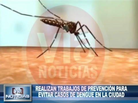 Trabajos de prevención para evitar casos de dengue en la ciudad
