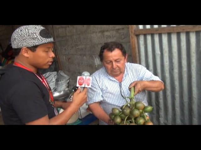 El precio del pijuayo en Tarapoto, producto de exportación