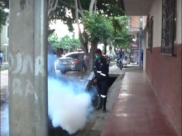 Continúan trabajos de fumigación durante mandato de inamovilidad