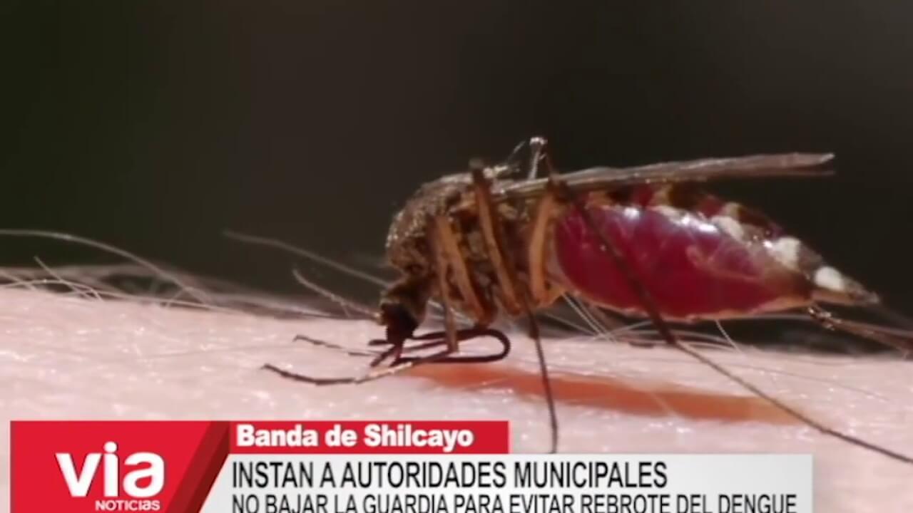 Confirman que casos de dengue han disminuido en la región San Martín