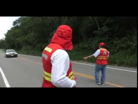 Tarapoto: intensifican operativos en carretera por feriado largo