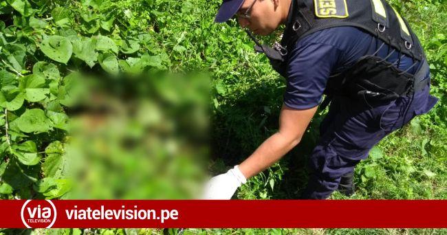 Reportan hallazgo presuntamente de un feto en terreno deshabitado de Tarapoto