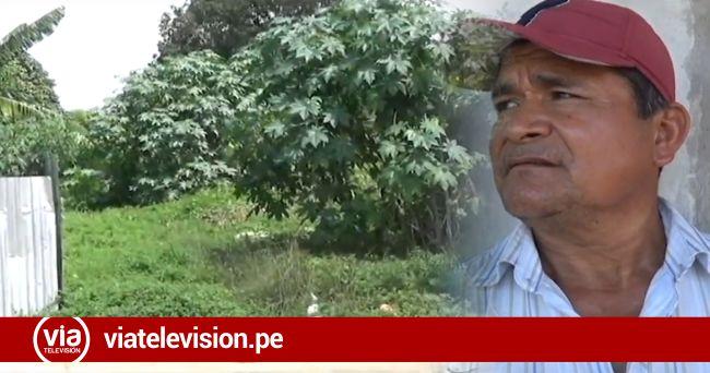 Piden sanción para propietario de terreno abandonado donde habrían encontrado feto