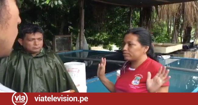Operativo para evitar contaminación de quebrada Ahuashiyacu