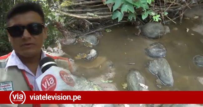 Denuncian presunta contaminación  de la UNSM a quebrada Ahuashiyacu