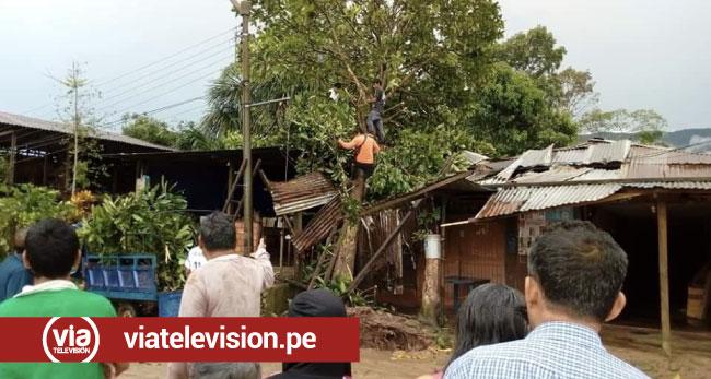 30 viviendas afectadas en Chazuta es el resultado de intensa lluvia y vientos fuertes.