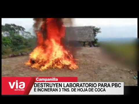 Destruyen laboratorio para PBC e incineran 3 tns. de hoja de coca