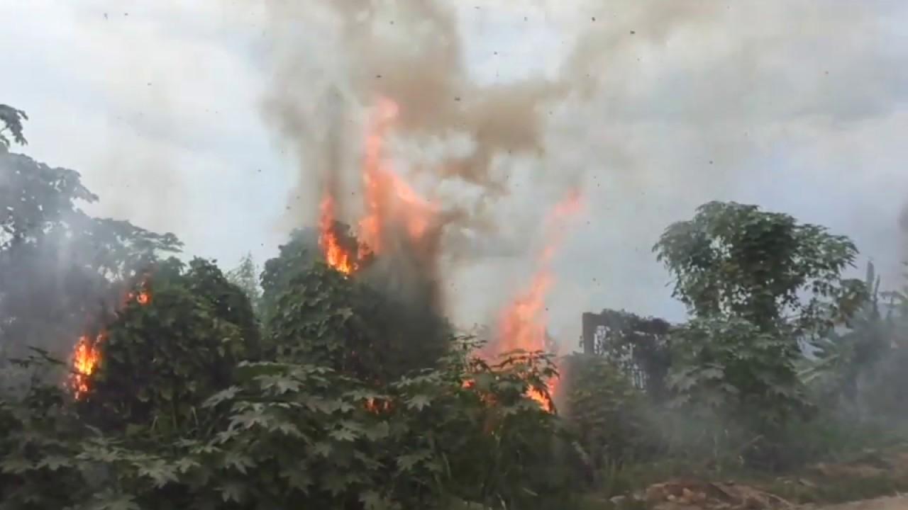 Incendio forestal de gran magnitud estaba a punto de llegar a viviendas