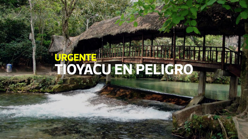 Naciente del río Tioyacu en peligro por extracción de piedra caliza