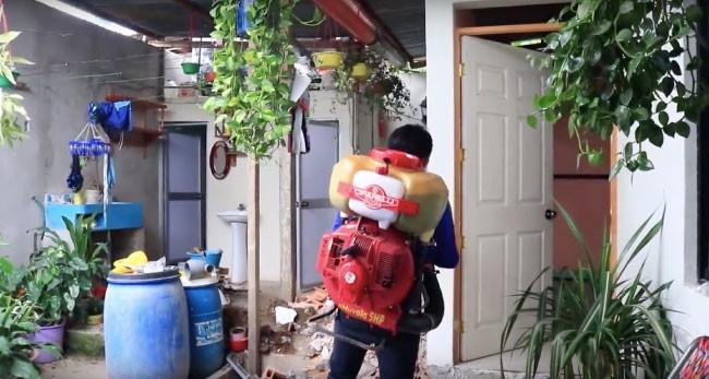 Morales: con fumigación casa por casa Inician campaña de lucha contra el dengue