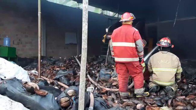Cacatachi: incendio en planta de procesadora  de cocos deja daños materiales