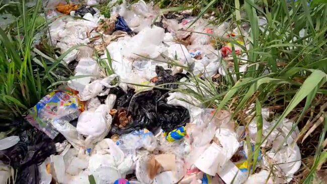 PNP: intervienen a personas que contaminan áreas verdes