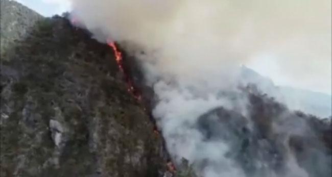 Incendios forestales se incrementan en la región San Martín