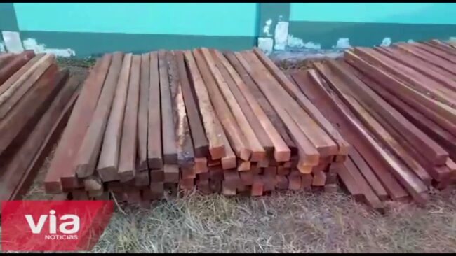 Picota: incautan madera al parecer de procedencia ilegal