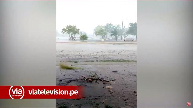 Picota: lluvia con fuerte viento causa  estragos en diversos lugares