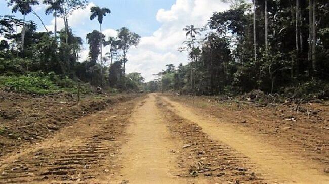 Congresista Giovanni Acate explica las razones para construir carretera Yurimaguas – Moyobamba