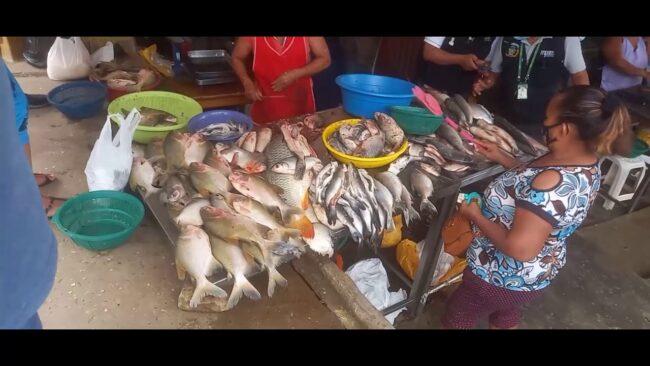 Tarapoto: inspeccionan locales de venta de pescado en barrio Comercio