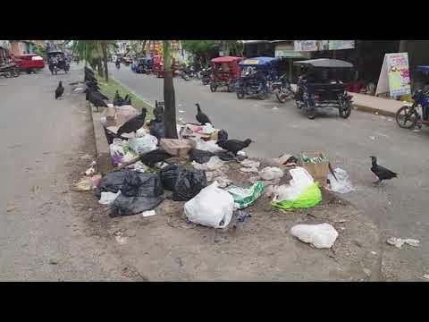 Basura acumulada convierte en foco infeccioso calle céntrica de Tarapoto
