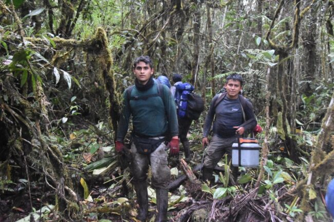 Expedicionarios de ruta Moyobamba – Balsapuerto cumplieron su objetivo tras dos días de caminata